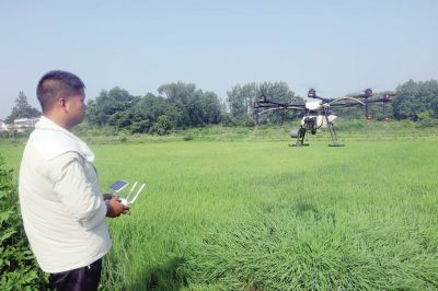 图片新闻:无人植保机助力田间管理