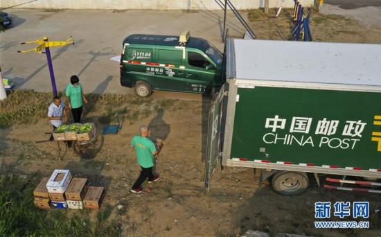 #(社会)(5)河北遵化:邮政快递助农增收