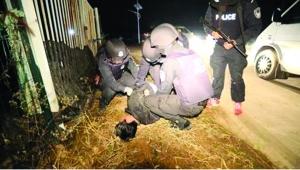 """南京版""""破冰行动"""":毒贩向警察"""