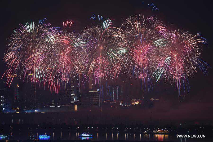Fireworks illuminate sky to mark China-African Economic and Trade Expo