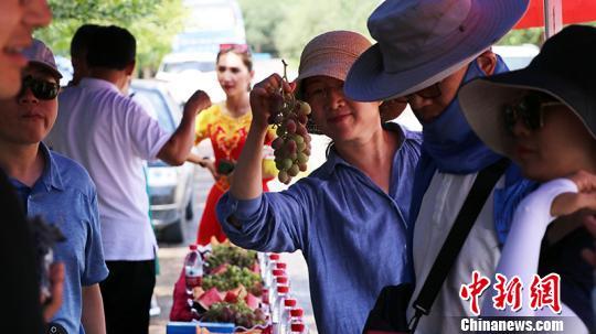 新疆鄯善县邀海内外客商开启鲜食葡萄甜蜜之旅