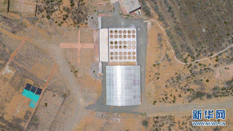(科技)(3)我国沙区唯一的大型称重式蒸渗仪群通过验收