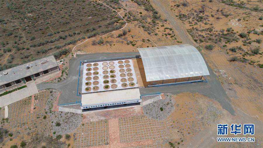 (科技)(6)我国沙区唯一的大型称重式蒸渗仪群通过验收