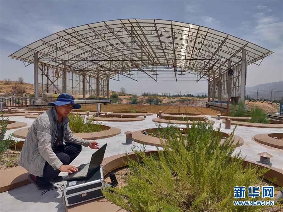(科技)(2)我国沙区唯一的大型称重式蒸渗仪群通过验收