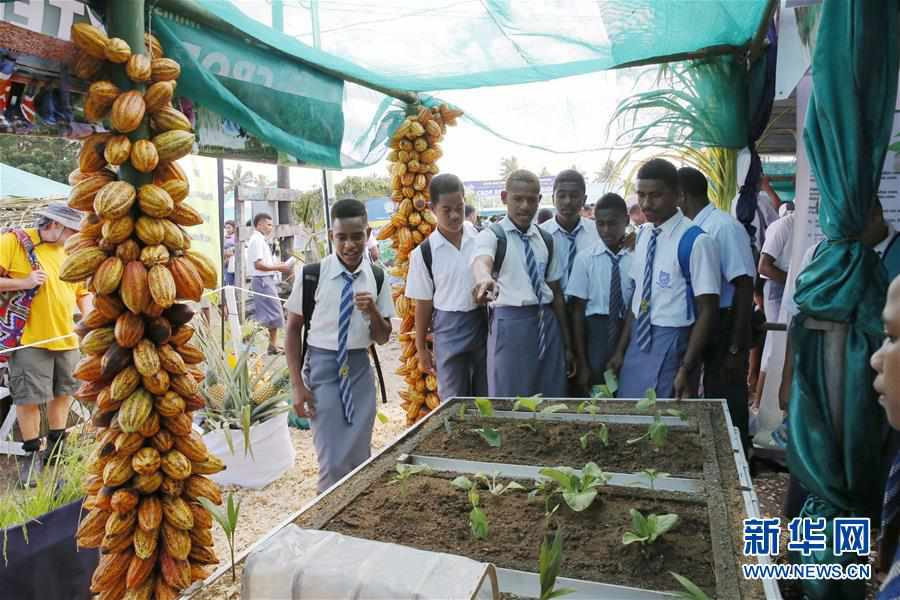 (国际)(2)2019年斐济全国农业展在首都苏瓦举行