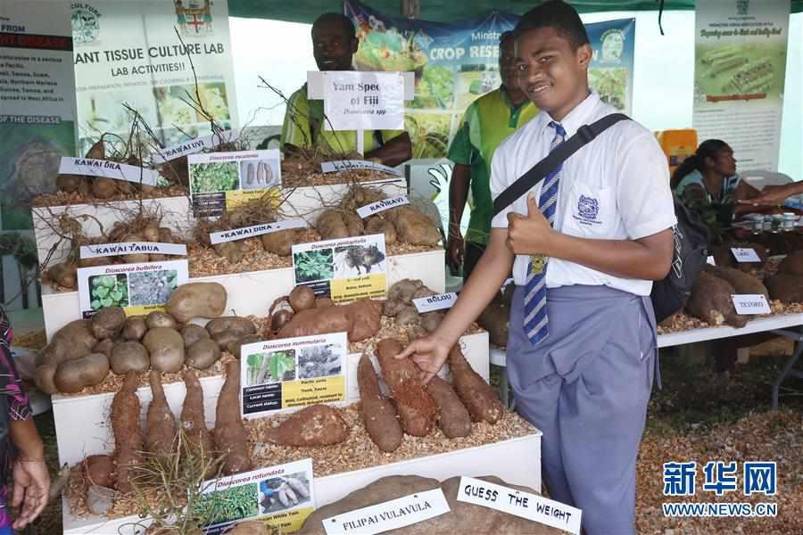 (国际)(1)2019年斐济全国农业展在首都苏瓦举行