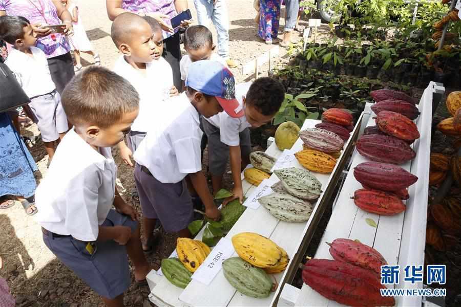 (国际)(3)2019年斐济全国农业展在首都苏瓦举行