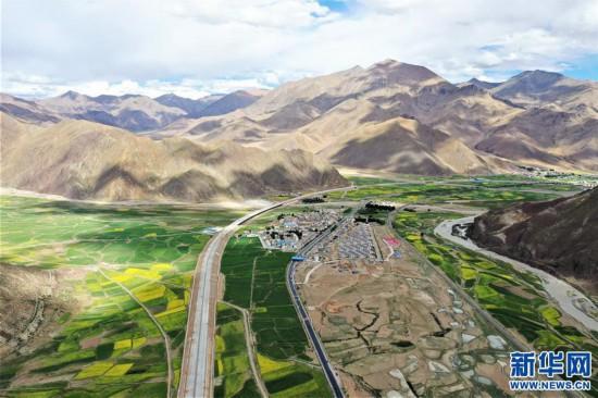 (美丽中国)(3)西藏:油菜花开似金毯