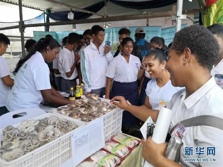 (国际)(4)2019年斐济全国农业展在首都苏瓦举行