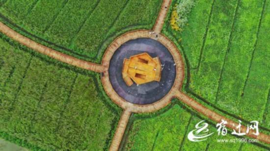 宿迁沭阳:田园综合体美了乡村富农增收