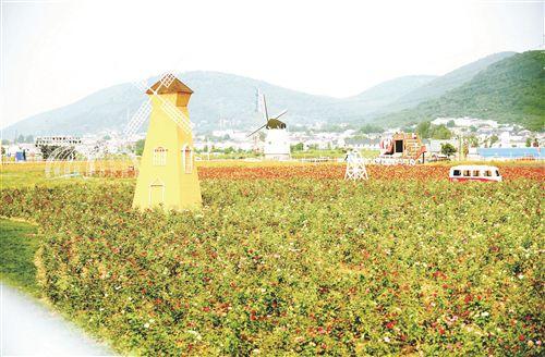 徐州铜山开展环境整治 田园乡村