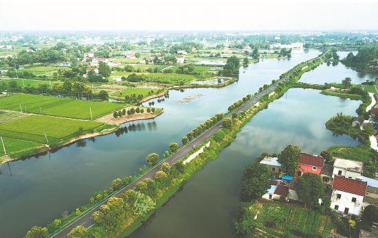 航拍:水乡新路安徽推动农村公路向高质量发展