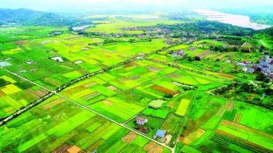"""惠州惠城区横沥镇墨园村:一个中国传统村落的""""乡愁经济学"""""""