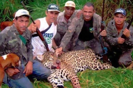 巴西7人非法偷�C�F伙落�W一男子累��⒑�1000�b美洲虎