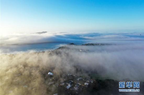 (国际)(1)奥克兰大雾弥漫