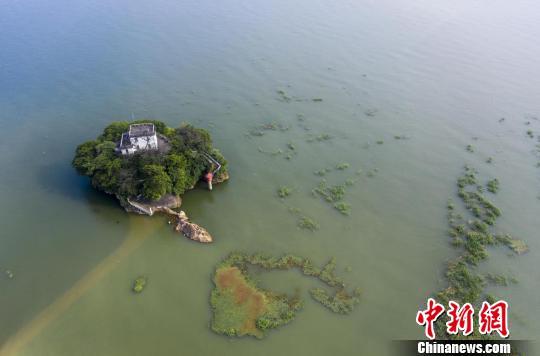 中国红十字会总会向江西下拨188.6万元救灾物资_青年志愿者服务日