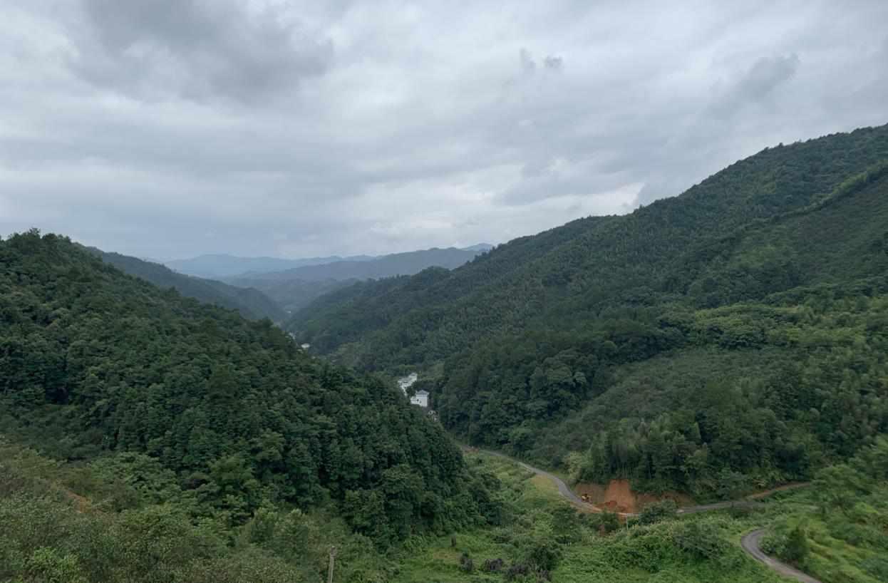 【看长江之变】一二三产融合,野果世界打造生态产业化新样本