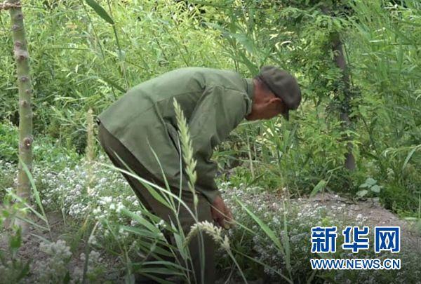 """【边疆党旗红】征战""""沙场""""60载老兵王成帮的绿色边疆梦"""