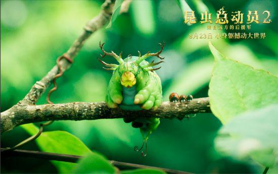 """《昆虫总动员2》:高萌预警来袭 众昆虫上演""""微观世界奇遇记"""""""
