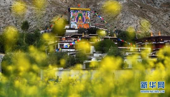 西藏扎西坚白寺展佛