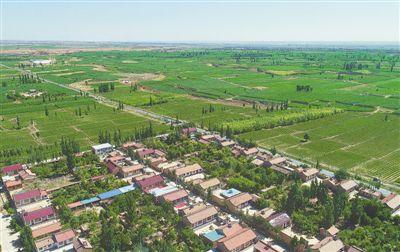<p>  柳泉村从2016年起种植黄花菜,累计种植面积达4500亩。目前,柳泉乡累计种植黄花菜11200亩,以特色产业发展带动农民增收。</p>