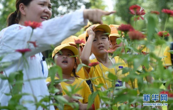 (社会)(1)暑期爱心托管班:让企业员工子女开心过暑假