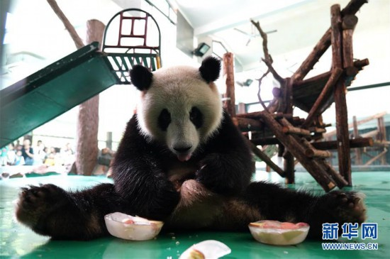 """(社会)(1)上海:动物园里的""""清凉夏日"""""""
