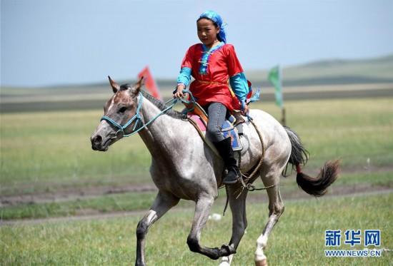 """(图片故事)(1) 少女骑手马背上""""飞驰""""的夏天"""