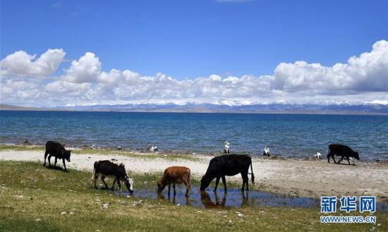 (美丽中国)(2)圣湖玛旁雍错湖