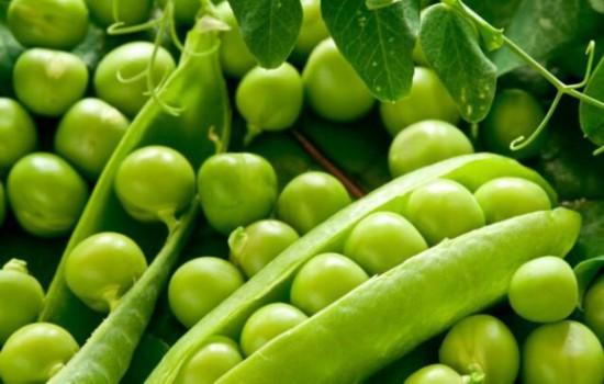 最适合减肥的8种食物 让你吃出好身材