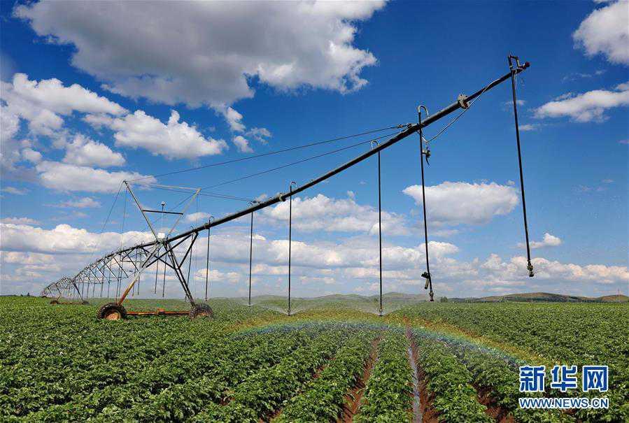 (经济)(1)节水灌溉助推现代农业发展
