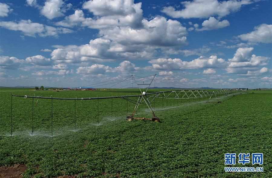 (经济)(2)节水灌溉助推现代农业发展
