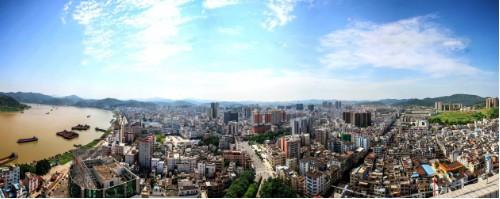 粤北郁南:以无核黄皮为媒,走绿色发展新路