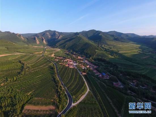 内蒙古马鞍山村:生态兴农为乡村振兴注入新动力