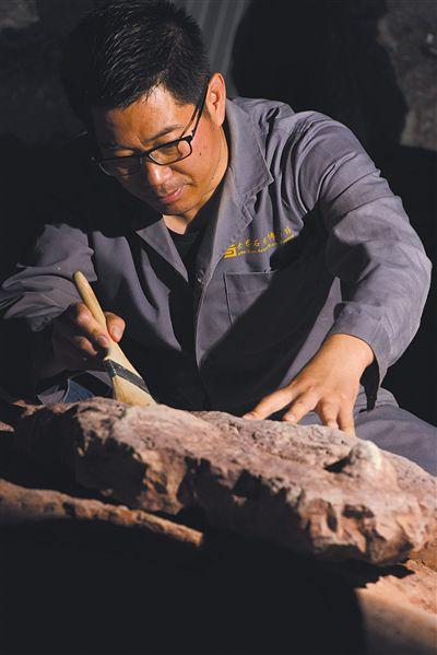 江西赣州发现亚洲首例暴龙足迹