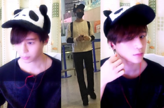而就是一只很可爱的熊猫