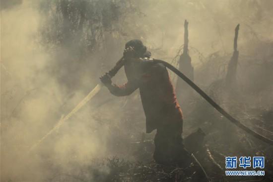 (國際)(1)印度尼西亞林火肆虐