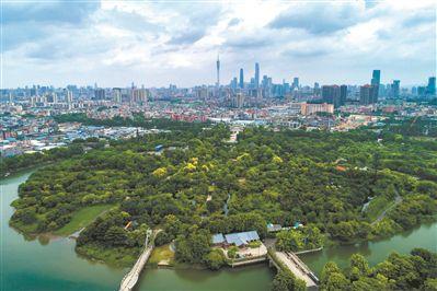 新中轴南 广州绿心