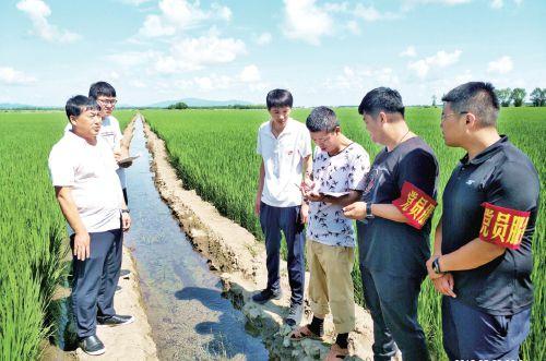 北大荒科学管理确保水稻丰收