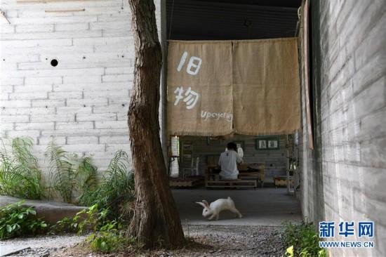"""(社会)(1)她在深圳改造""""破烂"""""""