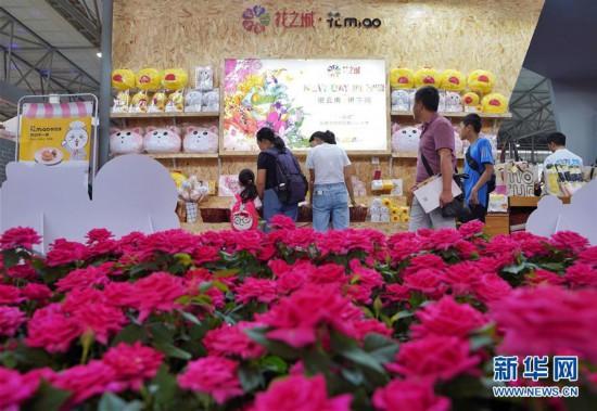 (经济)(3)创意云南2019文化产业博览会亮相昆明