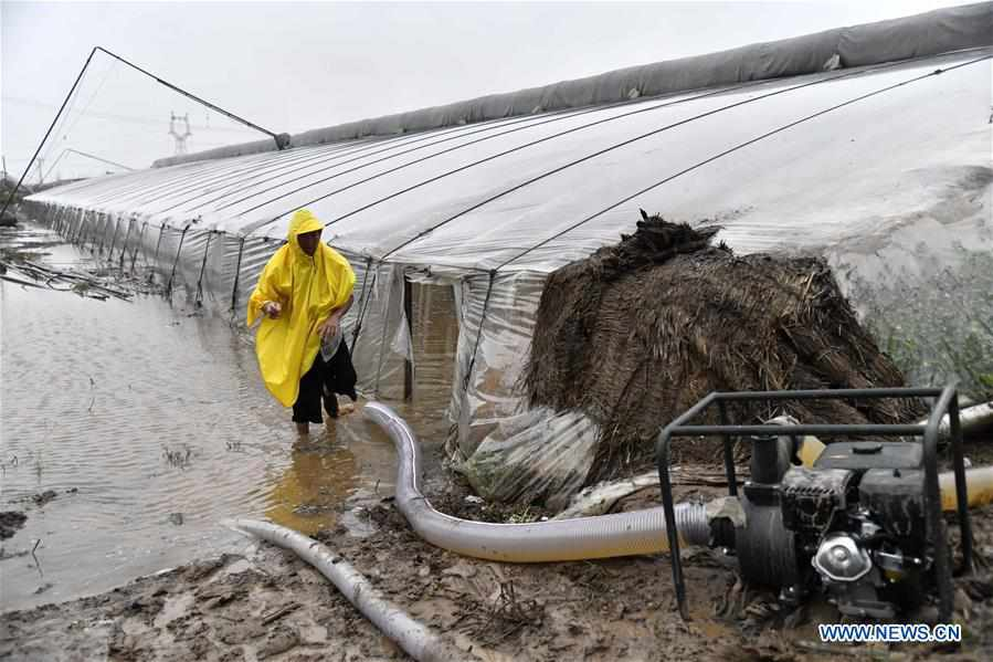 CHINA-SHANDONG-SHOUGUANG-TYPHOON-FLOOD-AFTERMATH (CN)
