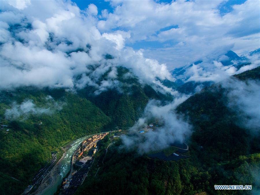 (EcoChina)CHINA-HORTICULTURAL EXPO-YUNNAN (CN)