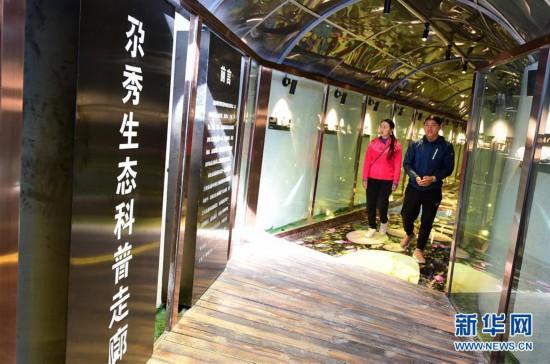 """(社会)(1)甘南藏区:生态旅游助牧民""""绿色""""致富"""