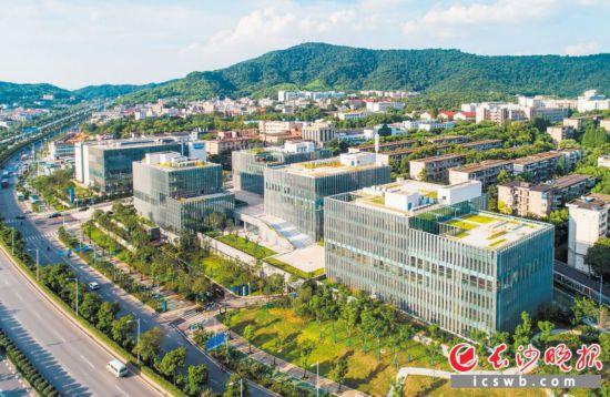 中南大学科技园(研发)总部累计注册科创企业172家。长沙晚报全媒体记者 邹麟 摄