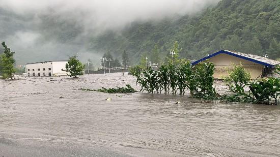 山津波で多くの家屋が埋まった臥竜自然保護区(写真提供・臥竜自然保護区管理局)。