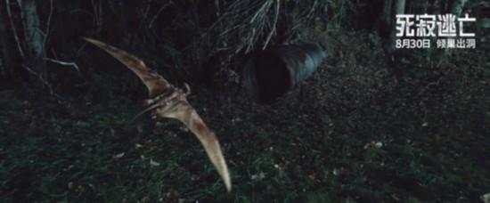 《死寂逃亡》片方首度曝光正片片段 将于8月30日登陆全国院线