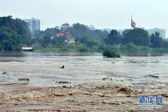 (国际)(1)暴雨导致印度亚穆纳河水位上涨