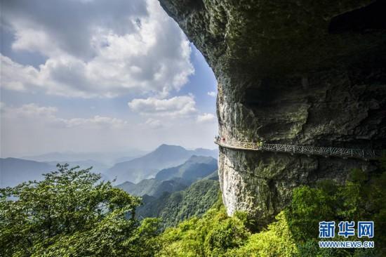 (美丽中国)(1)重庆金佛山:喀斯特地貌显奇观