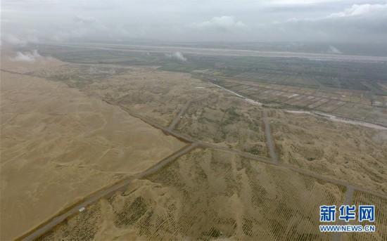 (环境)(6)雨后大漠景如画
